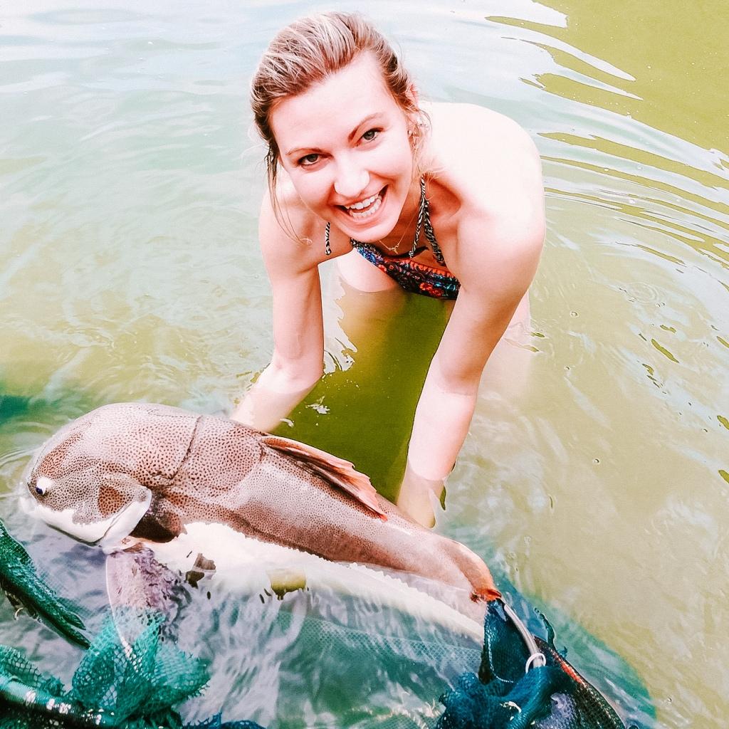 amazonian red tailed catfish exotic fishing thailand